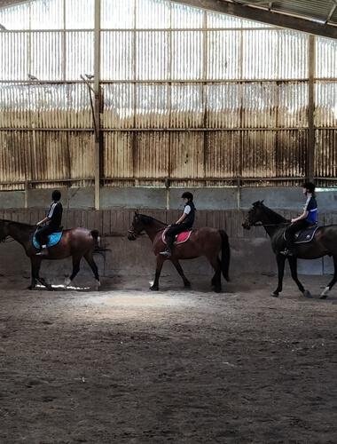Stage d'été d'équitation et anglais 2020 - enfants/ados